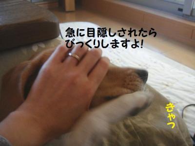 目隠しっ!
