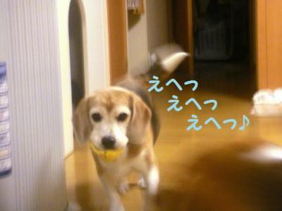 幸子 と遊ぶコテツ