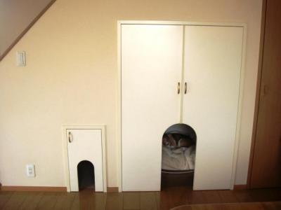 犬部屋 全景