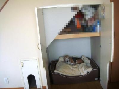 犬部屋 オープン