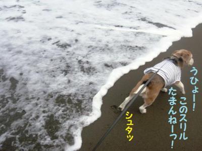 海デビュー 7 ひとり遊び