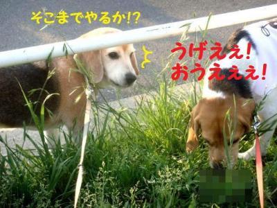 キス 5 うげええ!