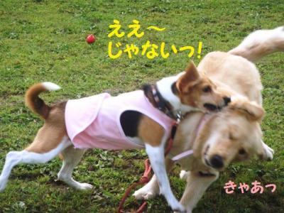 ゴールデン 3 え~じゃない!