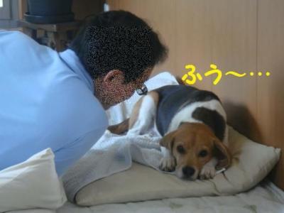愛 4 興ざめ