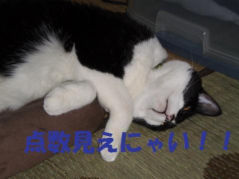 004_convert_20090610201908.jpg