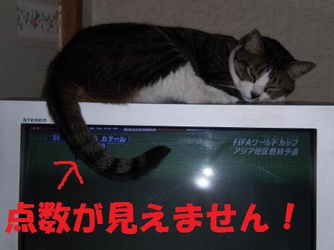 006_convert_20090610202114.jpg