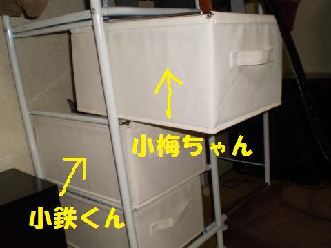 009_convert_20090517183010.jpg
