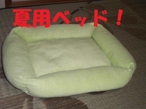 009_convert_20090627215829.jpg
