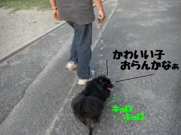 0730-06_convert_20080731172758.jpg