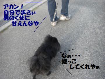 0730-07_convert_20080731172925.jpg