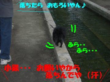 0730-11_convert_20080801082654.jpg