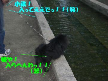 0730-12_convert_20080801082806.jpg