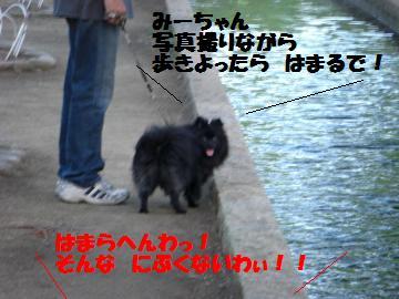 0730-13_convert_20080801082928.jpg