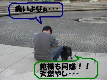 0730-15_convert_20080731173242.jpg