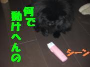 0731-04_convert_20080805081335.jpg
