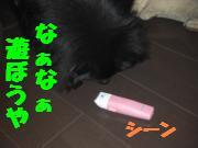 0731-05_convert_20080805081420.jpg