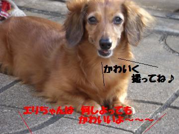 0802-01_convert_20080802193447.jpg