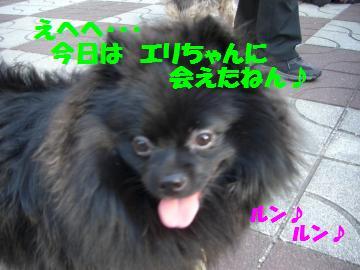 0802-02_convert_20080802193602.jpg