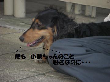 0802-03_convert_20080802193726.jpg