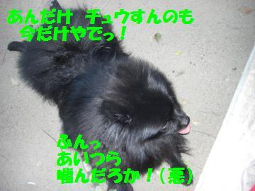 0803-06_convert_20080803214232.jpg