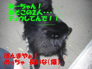 0803-08_convert_20080803214519.jpg