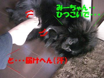 0804-02_convert_20080805080508.jpg