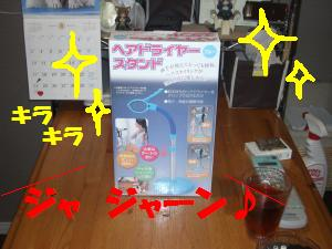 0805-02_convert_20080806143232.jpg