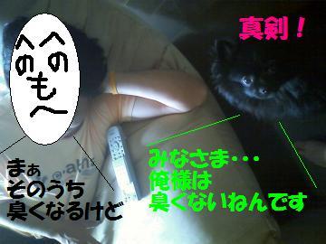 0808-06_convert_20080809011739.jpg