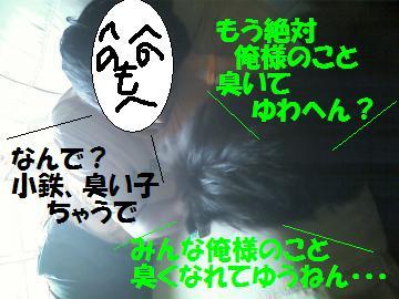 0808-07_convert_20080809011820.jpg