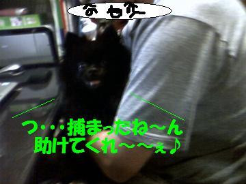 0809-02_convert_20080809230335.jpg