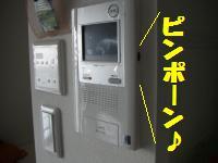 0813-24_convert_20080813215321.jpg