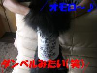 0813-30_convert_20080813220039.jpg