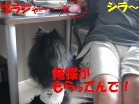 0813-58_convert_20080813221546.jpg