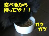 0813-73_convert_20080813222945.jpg