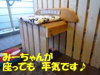 0815-23_convert_20080816164301.jpg