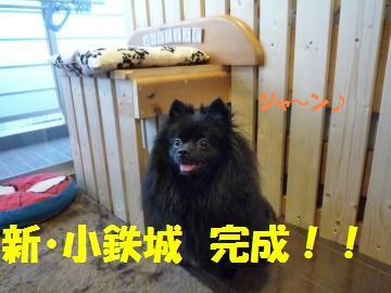 0815-28_convert_20080816164604.jpg