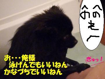 0816-13_convert_20080818010548.jpg