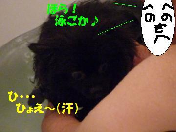 0816-14_convert_20080818010856.jpg