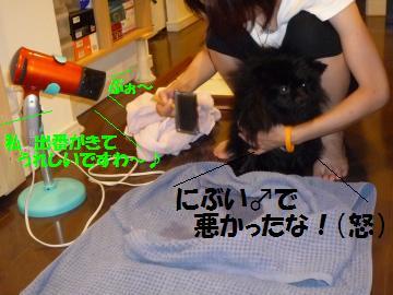 0816-23_convert_20080818012122.jpg