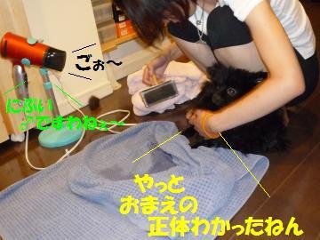 0816-29_convert_20080818012409.jpg