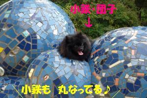 0817-39_convert_20080818155643.jpg