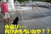 0817-49_convert_20080818160942.jpg