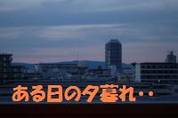 0817-55_convert_20080818161625.jpg