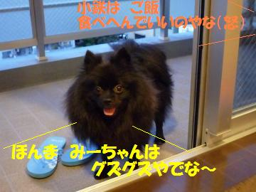 0817-58_convert_20080818161900.jpg