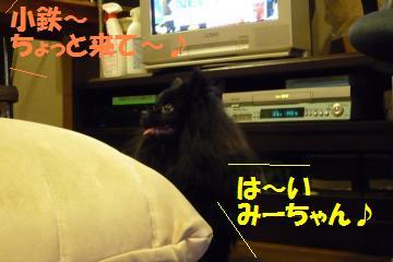 0817-59_convert_20080818162001.jpg