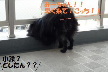 0821-1_convert_20080822193711.jpg