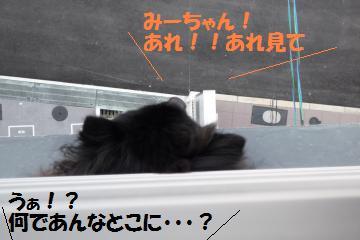 0821-3_convert_20080822193823.jpg
