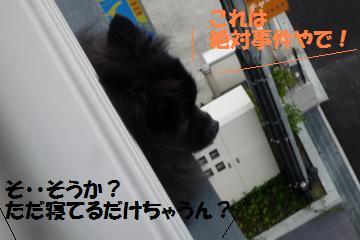 0821-6_convert_20080822193948.jpg