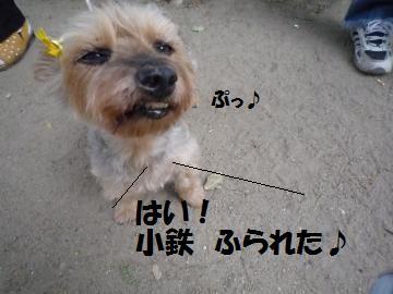 0822-10_convert_20080822195048.jpg