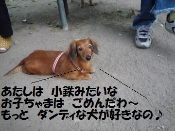 0822-8_convert_20080822194930.jpg